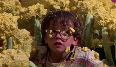 Film: Honey, I Shrunk the Kids